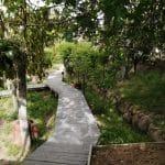 chile-wellness-bienestar-programa-fascinante respiro-24