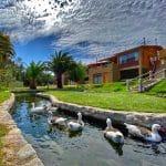 chile-wellness-bienestar-programa-reencontrar-tu-camino-24